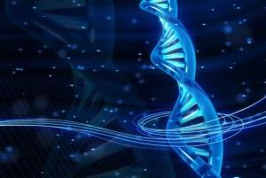 10-curiosidades-sobre-el-ADN-que-no-conocias-6